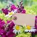 bouquet-2427843_960_720