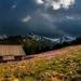 mountains-2154198_960_720