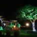 hd-kerst-achtergrond-met-een-tuin-vol-met-kerstverlichting-wallpa