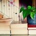 books-2826380_960_720