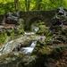 creek-2825060_960_720