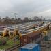 49 stuks. Bijna de gehele vloot aan Buffels staat in Nijmegen
