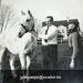 Dr Dierickx met paard in Kapellestraat