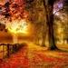 countryside-autumn-fall_1391291205