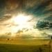 sunny-fields_185273947