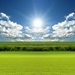 sunny-green-field_457563120