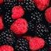 blackberries_456612211