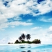 palm-trees-island-beach_1875449270