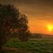 sunset-field_1938196229