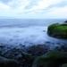 sea-shore-2_1584714698