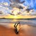 beach_1275947727