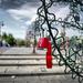 211236__lee-bridge-locks-love_p
