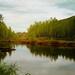 autumn-2666235_960_720