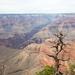 canyon-3222903_960_720