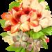 flora-2023951_960_720
