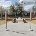 84. Opening petanquebanen 16 April