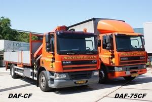 DAF-CF/DAF75-CF