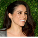 meghan-markles-engagement-to-harry-royal-title-and-citizenship-up