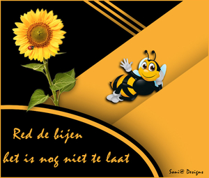 project-bijen