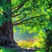 Beautiful-Wallpapers-Of-Trees-4