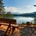 bench_logs_lake_coast_trees_8222_1920x1080