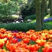 1005594_keukenhof-largest-garden-wallpapers_2560x1920_h