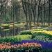 Keukenhof-Gardens