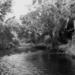 1952: de Mpese nabij Kimpese