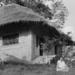 1953: Dembo