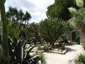 2B Botanische tuin _099