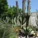 2B Botanische tuin _111