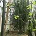 2B Botanische tuin _121
