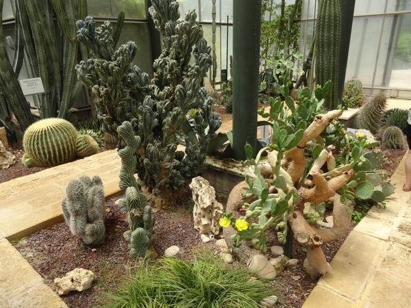 2B Botanische tuin _122