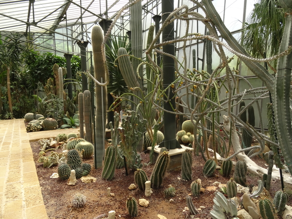 2B Botanische tuin _123