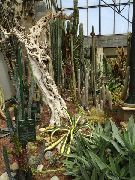 2B Botanische tuin _127