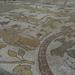 2C Otranto _159_kathedraal met mozaieken