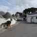 4C Alberobello, Trulli _DSC00363