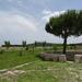 5B CasteldelMonte _DSC00435