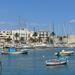 5C Bari _haven
