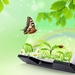 143192_butterfly-nature-3d-hd-wallpapers_2560x1440_h
