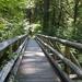 bridge-1548181_960_720