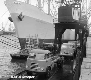 DAF-7 Streper
