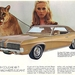 Mercury cougar XR7 1970 (MBabes Vintage Cars Garage)