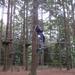 15) Vliegen tussen de bomen