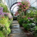 9-long-greenhouse