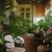 c99334aa78bc61c7985dd37633f9f5f6--greenhouse-ideas-sun-room