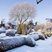 d8c837b99e3a783ebfce99228082a8cf--snow-scenes-unique-garden