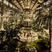 Flickr_-_…trialsanderrors_-_Winter_garden,_Nice,_France,_ca._18