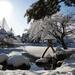 japanese-garden22