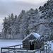 416744-christmas-snow-scene-wallpaper-2560x1600-high-resolution